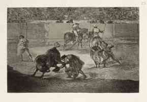 bullfighting francisco goya bowing to pepe the bull