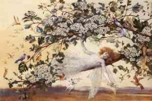 fairy illustration ariel