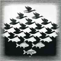 m c escher optical illusion bird and fish pattern