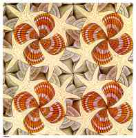 m c escher optical illusion shells and starfish