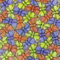 m c escher optical illusion symmetry watercolor 70 butterfly