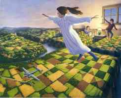 rob gonsalves optical illusion flying from bedroom to countryside