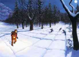 rob gonsalves optical illusion in the snowy woods